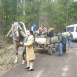 аренда упряжных лошадей для кино kazenkin.ru