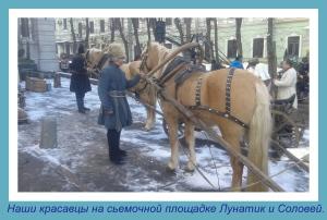 kazenkin.ru лошади на праздник. лошади в кино