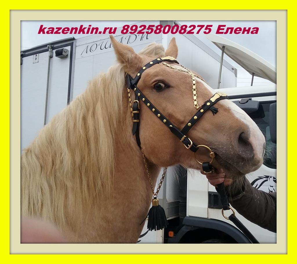 kazenkin.ru upryazh-dlya-loshadej-dugi-kolesa упряжь купить
